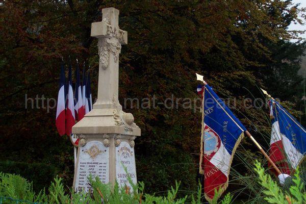 association anciens combattants : drapeaux rendant les honneurs lors d'une cérémonie au monument aux Morts