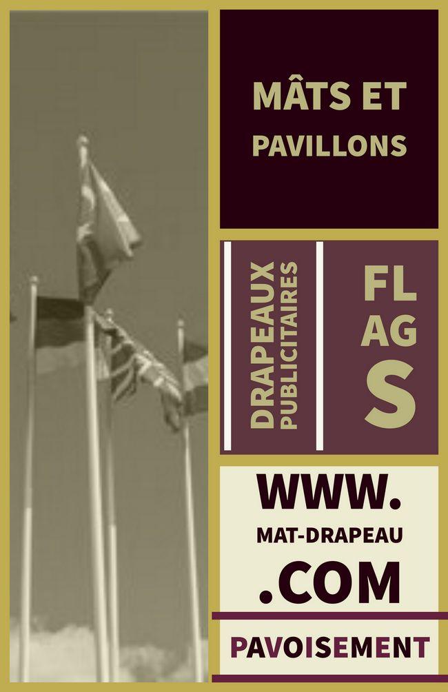 drapeau France : les outils pour pavoiser